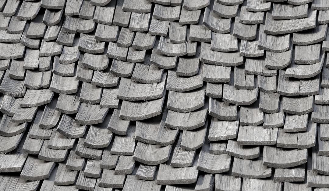 wholesale roof shingles near Tampa