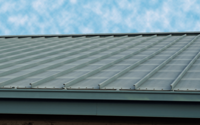 What Is Drip Edge On Your Roof? (Why You Need It, Cost, & More)