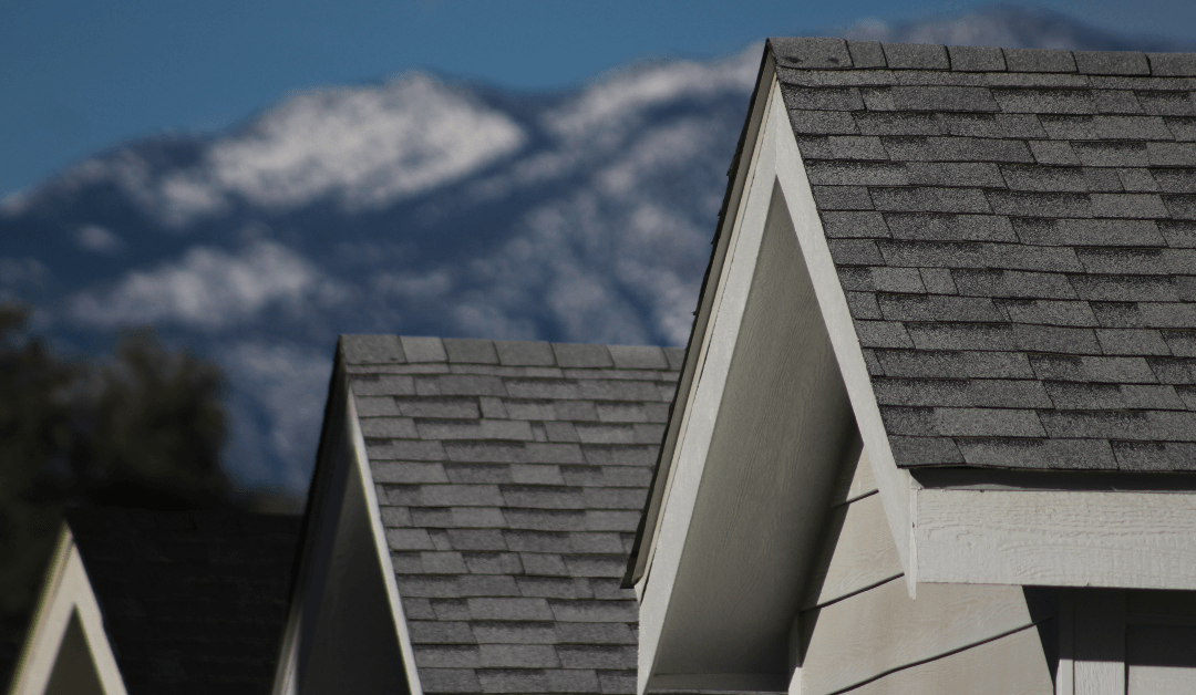 Wholesale roof shingles in Orlando and Tampa