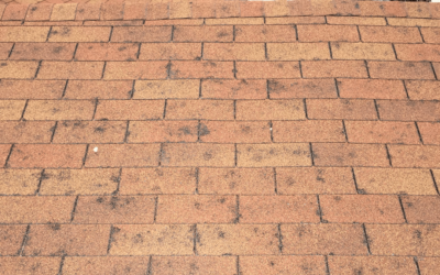 How To Deal With Hail Damage As A Contractor